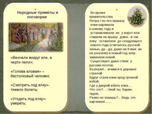 Народные приметы и поговорки «Венчали вокруг ели, а черти пели»; «Голова ело