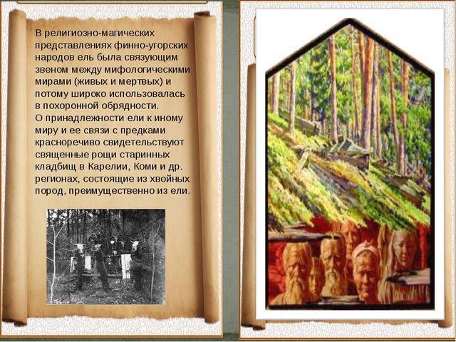 В религиозно-магических представлениях финно-угорских народов ель была связу...