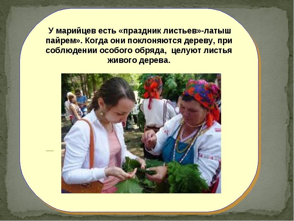 У марийцев есть «праздник листьев»-латыш пайрем». Когда они поклоняются дере...