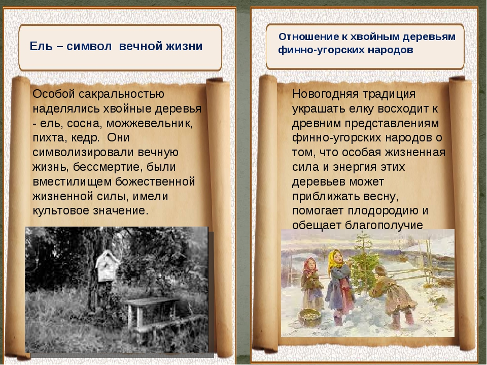 """"""" Отношение к хвойным деревьям финно-угорских народов Особой сакральностью н..."""