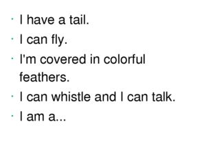 I have a tail. I can fly. I'm covered in colorful feathers. I can whistle and