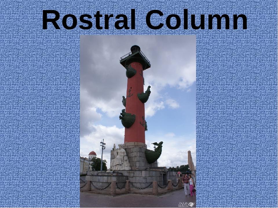 Rostral Column