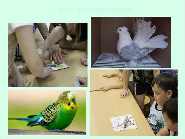 6 задание «Сложи птицу из частей»