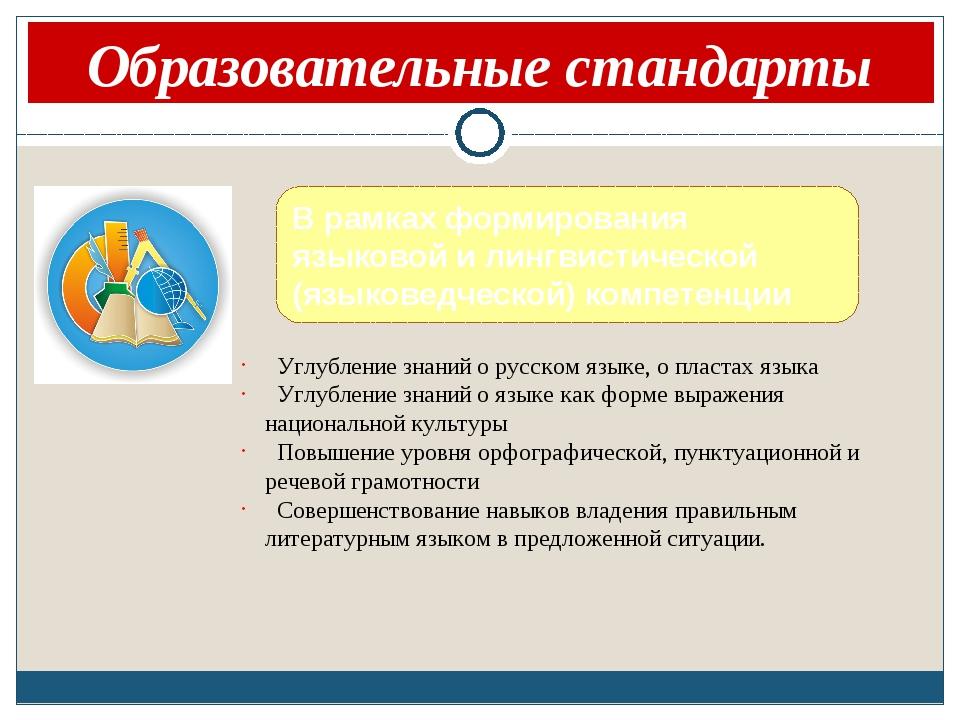 Краткая аннотация проекта Образовательные стандарты В рамках формирования язы...