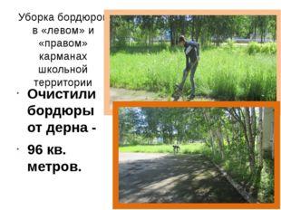 Уборка бордюров в «левом» и «правом» карманах школьной территории Очистили бо