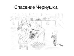 Спасение Чернушки.