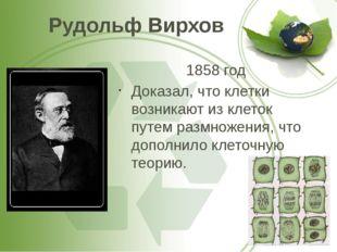 Рудольф Вирхов 1858 год Доказал, что клетки возникают из клеток путем размнож