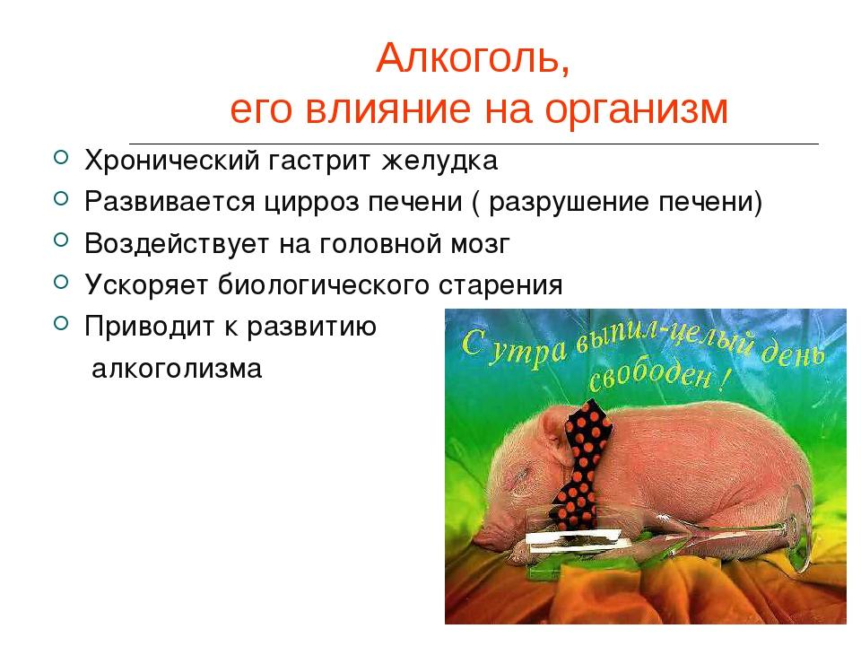 Алкоголь, его влияние на организм Хронический гастрит желудка Развивается цир...