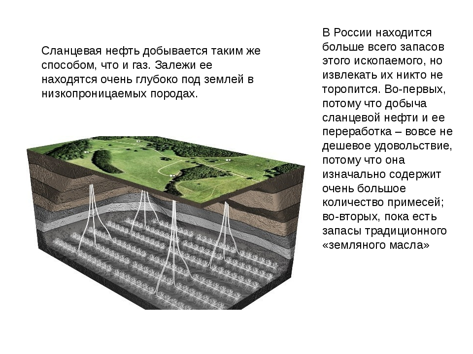 https://ds03.infourok.ru/uploads/ex/0537/00013db6-01758279/img4.jpg