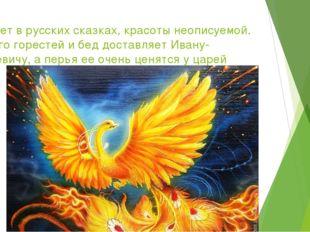 Живет в русских сказках, красоты неописуемой. Много горестей и бед доставляет