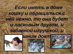 Если иметь в доме кошку и обращаться с ней нежно, то она будет и ласковым др
