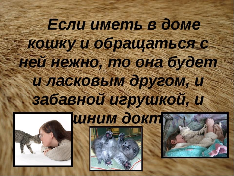 Если иметь в доме кошку и обращаться с ней нежно, то она будет и ласковым др...