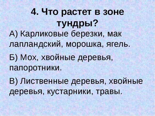 4. Что растет в зоне тундры? А) Карликовые березки, мак лапландский, морошка,...