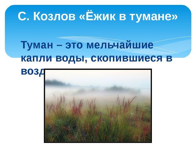 С. Козлов «Ёжик в тумане»