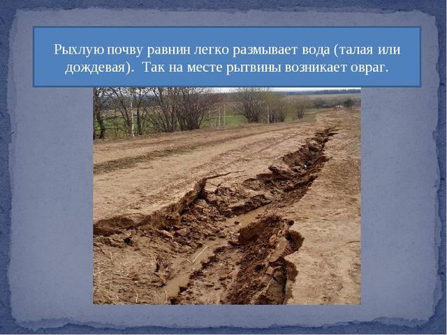 Рыхлую почву равнин легко размывает вода (талая или дождевая). Так на месте р...