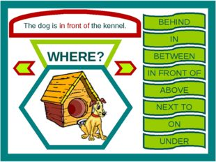 The dog is in front of the kennel. WHERE? BEHIND IN BETWEEN IN FRONT OF ABOVE
