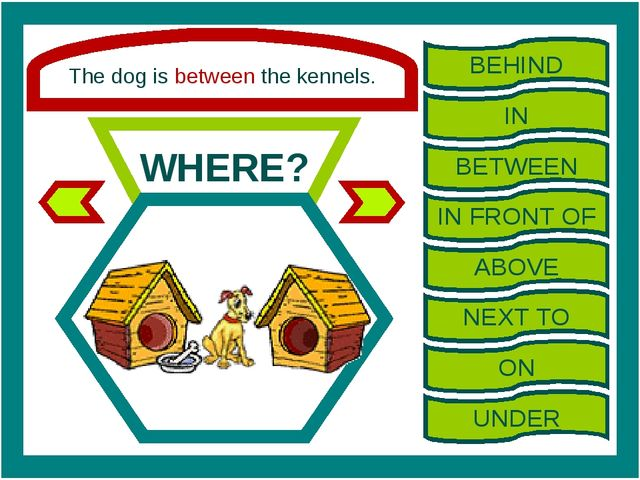 The dog is between the kennels. WHERE? BEHIND IN BETWEEN IN FRONT OF ABOVE NE...