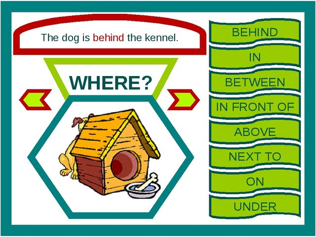 The dog is behind the kennel. WHERE? BEHIND IN BETWEEN IN FRONT OF ABOVE NEXT...