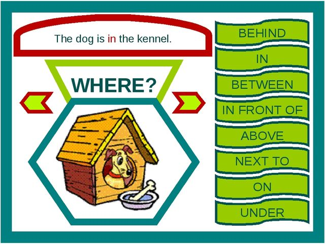 The dog is in the kennel. WHERE? BEHIND IN BETWEEN IN FRONT OF ABOVE NEXT TO...