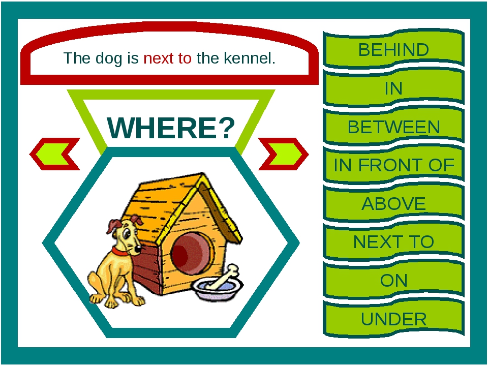 The dog is next to the kennel. WHERE? BEHIND IN BETWEEN IN FRONT OF ABOVE NEX...