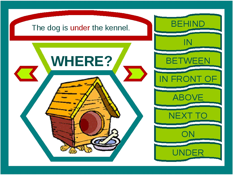 The dog is under the kennel. WHERE? BEHIND IN BETWEEN IN FRONT OF ABOVE NEXT...