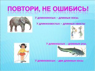 У длинноносых – длинные носы. У длиннохвостых – длинные хвосты У длинноусых -