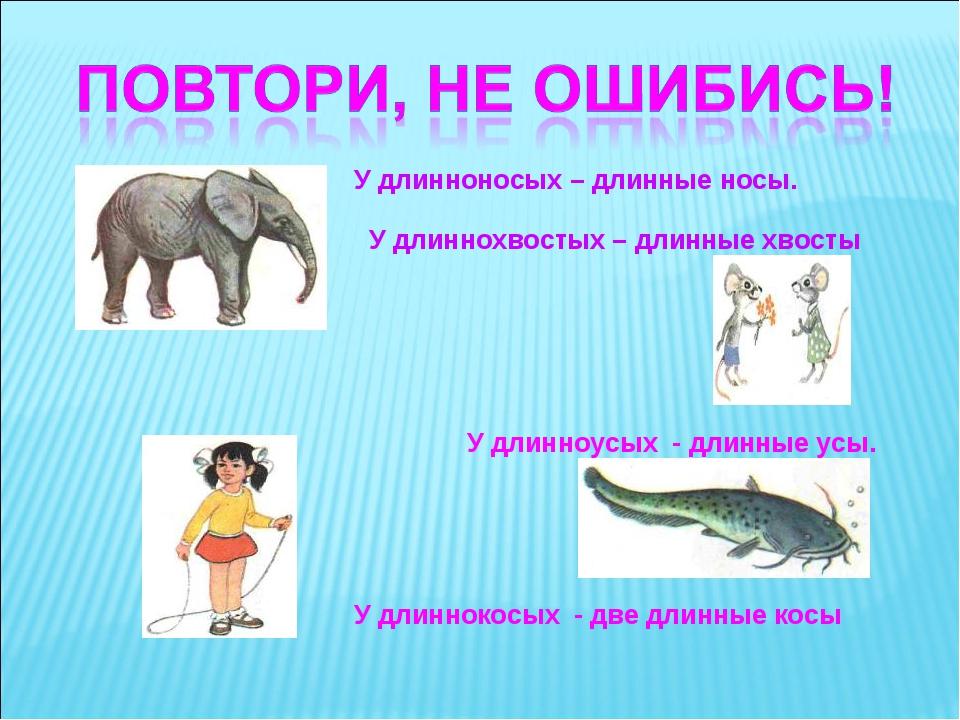 У длинноносых – длинные носы. У длиннохвостых – длинные хвосты У длинноусых -...