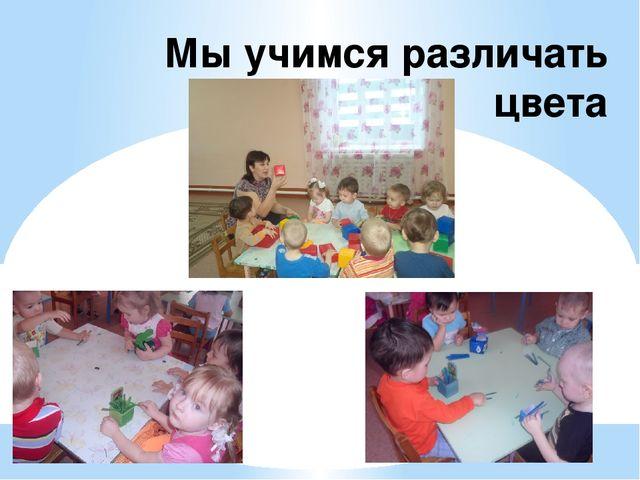 Мы учимся различать цвета