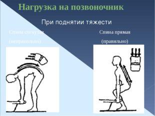 Нагрузка на позвоночник При поднятии тяжести Спина согнутая Спина прямая (неп