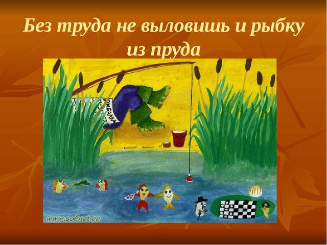 Без труда не выловишь и рыбку из пруда