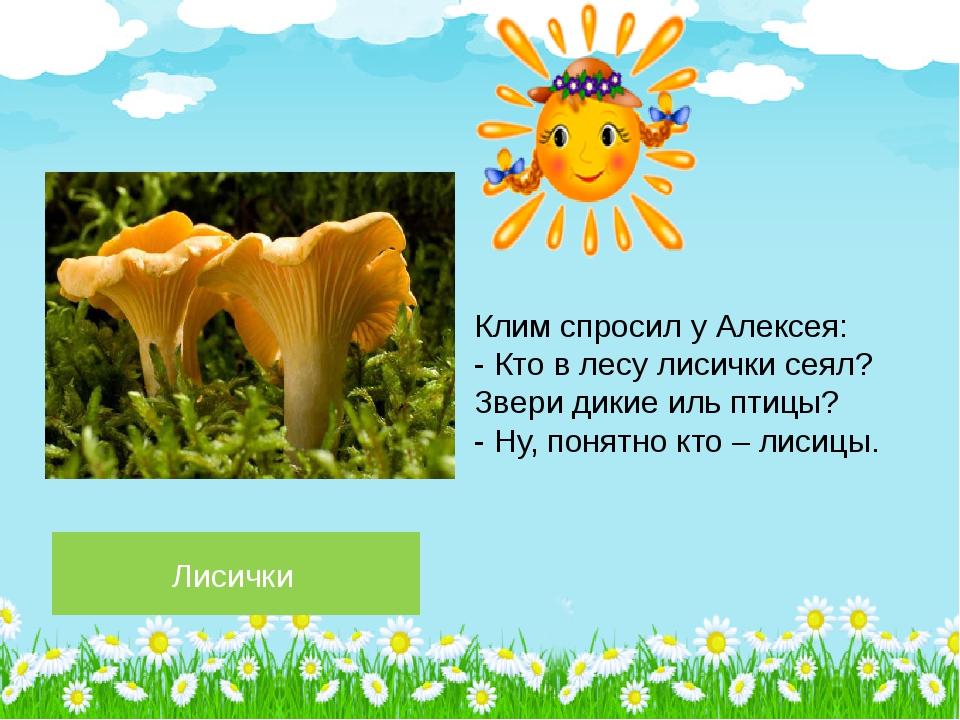 Лисички Клим спросил у Алексея: - Кто в лесу лисички сеял? Звери дикие иль пт...