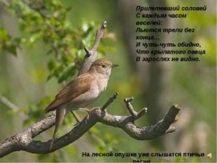 Прилетевший соловей Скаждым часом веселей: Льются трели без конца… Ичуть-чу