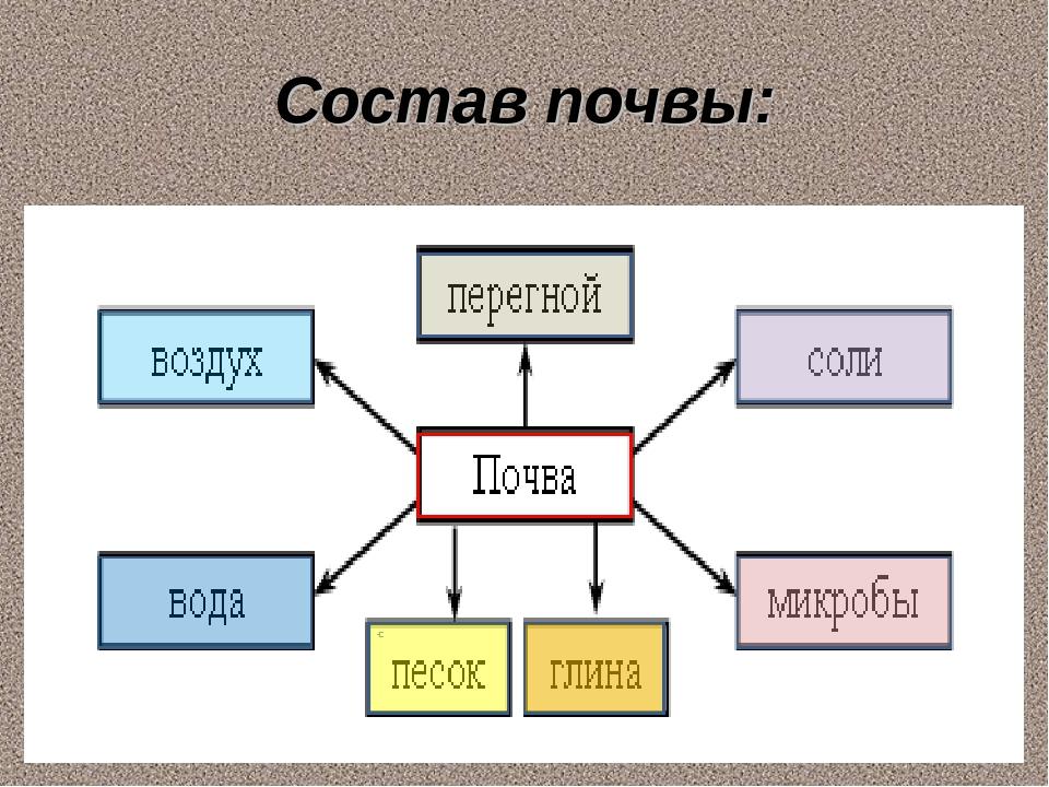 Состав почвы:
