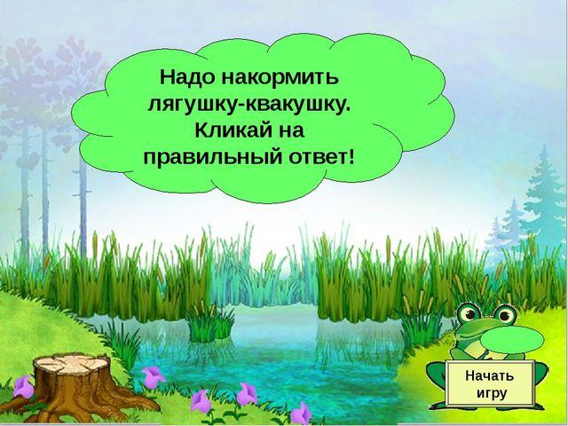 Надо накормить лягушку-квакушку. Кликай на правильный ответ! Начать игру