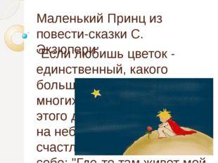 """Маленький Принц из повести-сказки С. Экзюпери: """"Если любишь цветок - единстве"""