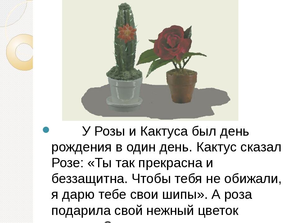У Розы и Кактуса был день рождения в один день. Кактус сказал Розе: «...