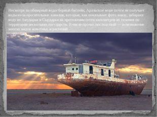 Несмотря на обширный водосборный бассейн, Аральское море почти не получает во