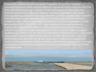 Развивается рыбный промысел и в дельте Сырдарьи. На протоке Сырдарьи — Караоз