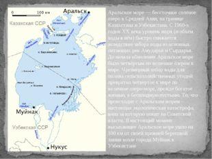 Аральское море — бессточное солёное озеро в Средней Азии, на границе Казахста