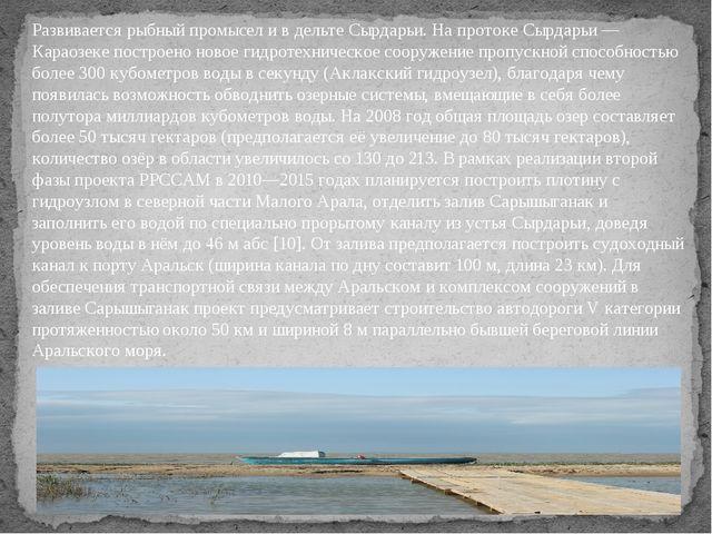 Развивается рыбный промысел и в дельте Сырдарьи. На протоке Сырдарьи — Караоз...