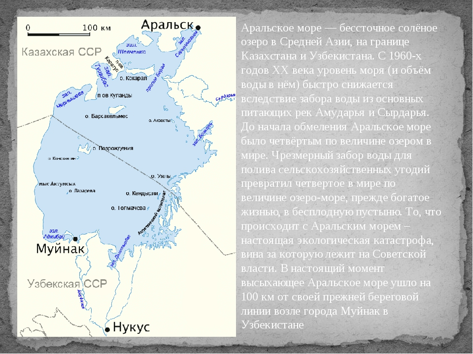 Аральское море — бессточное солёное озеро в Средней Азии, на границе Казахста...