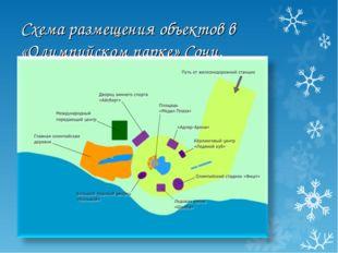 Схема размещения объектов в «Олимпийском парке» Сочи.