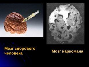 Мозг наркомана Мозг здорового человека