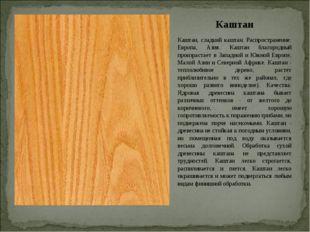 Каштан Каштан, сладкий каштан. Распространение: Европа, Азия. Каштан благород