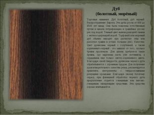 Дуб (болотный, морёный) Торговые названия: Дуб болотный, дуб черный. Распрост