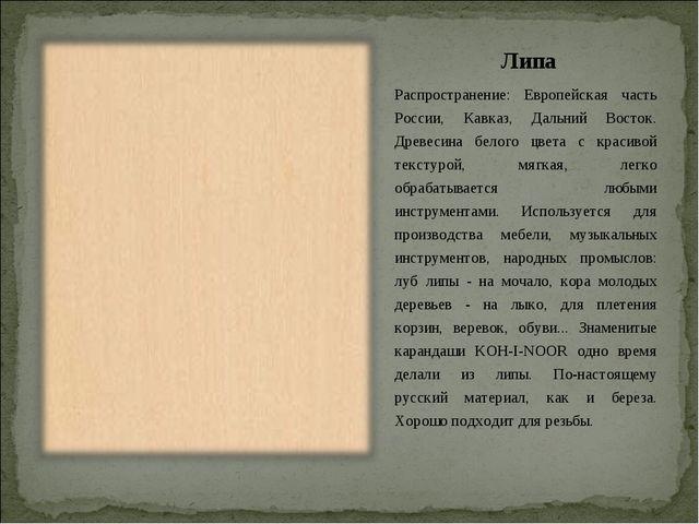 Липа Распространение: Европейская часть России, Кавказ, Дальний Восток. Древе...