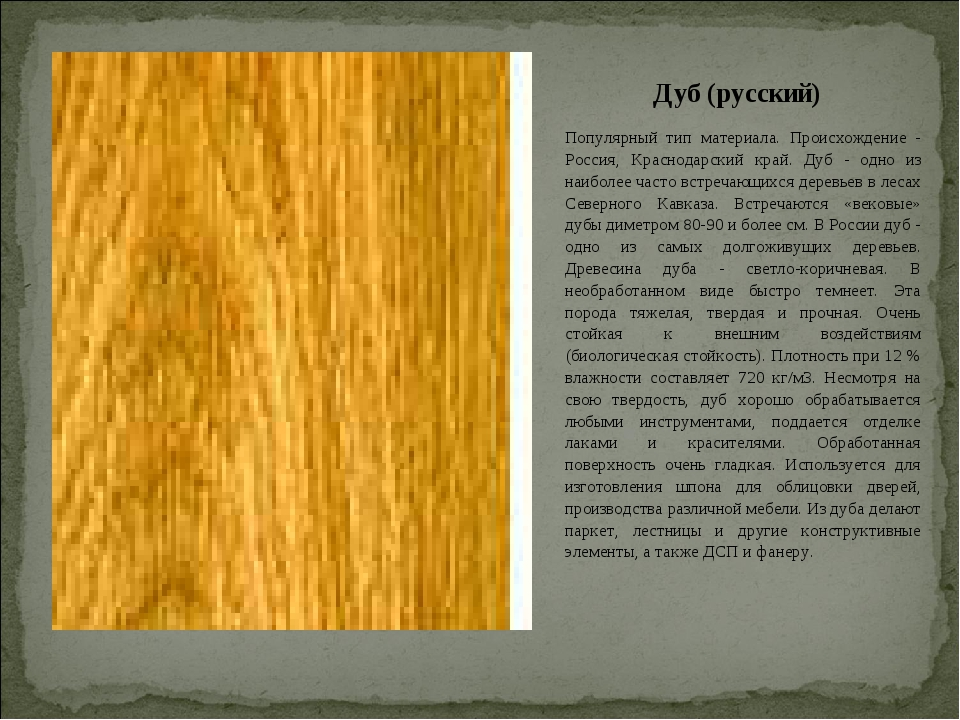 Дуб (русский) Популярный тип материала. Происхождение - Россия, Краснодарский...