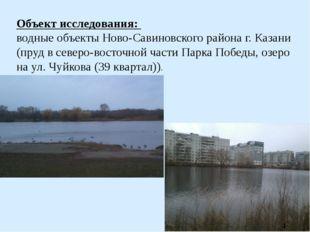 Объект исследования: водные объекты Ново-Савиновского района г. Казани (пруд
