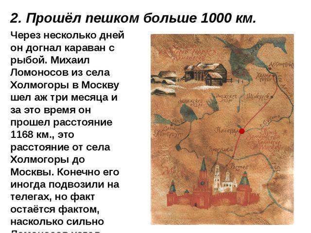 Через несколько дней он догнал караван с рыбой. Михаил Ломоносов из села Холм...
