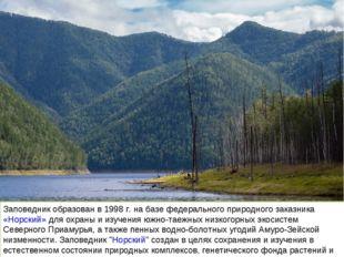 Заповедник образован в 1998 г. на базе федерального природного заказника «Нор